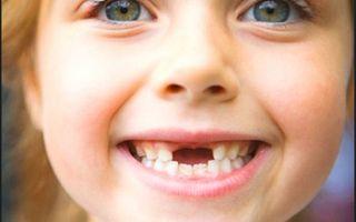 Как определить молочный зуб или коренной
