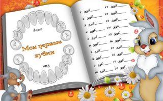 Как прорезаются верхние зубы