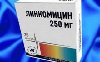 Периодонтит лечение антибиотиками