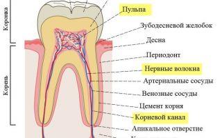 Когда удаляют нерв из зуба