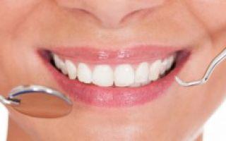 Сколько зубов