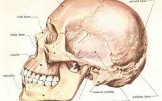 После удара в челюсть больно жевать
