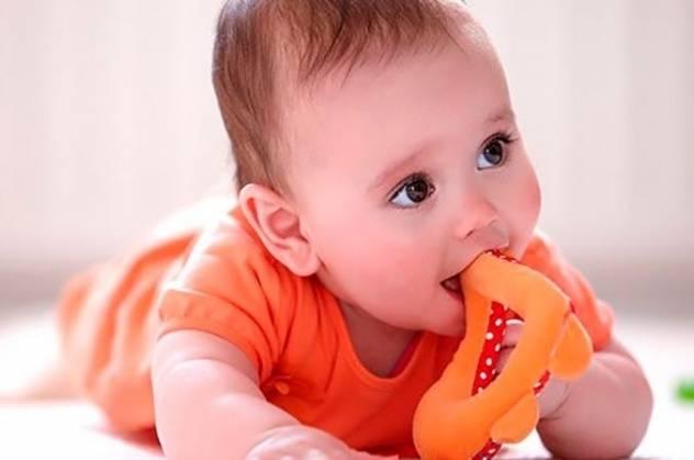ребенок грызет прорезыватель зубов