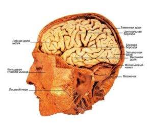 Воспаление периферических нервов