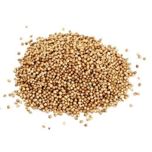 Семена кориандра при язвах на языке