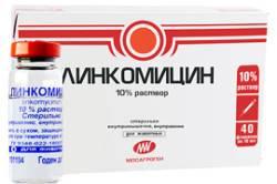 Линкомицин для уколов в десну