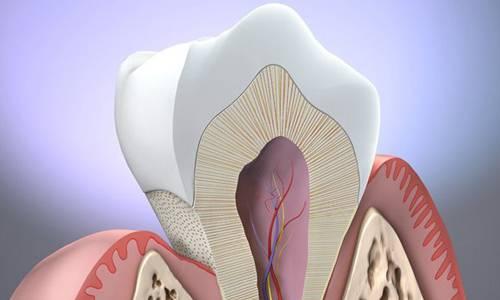 Проблема оголения шейки зуба