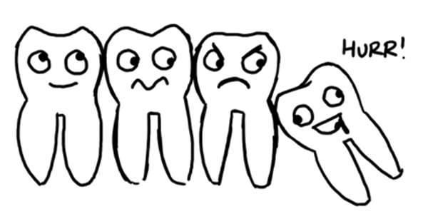 Из за чего растет зуб мудрости