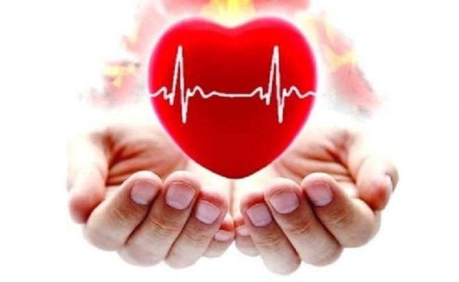 Патология сердечно-сосудистой системы