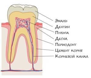 Больно жевать на зубе