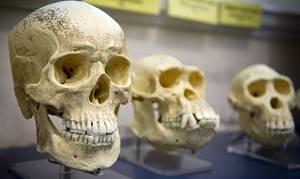 Современные зубы отличаются от древних